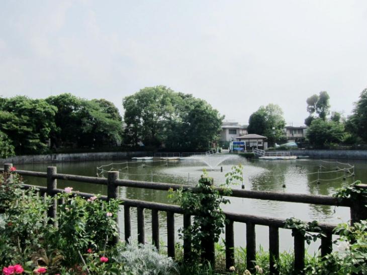 碑文谷公園本番