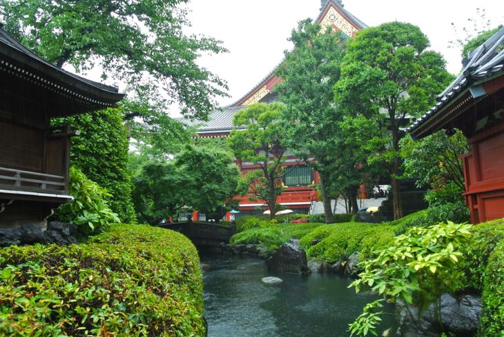 癒しの浅草寺