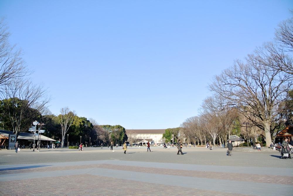 奥に見えるのは美術館です。