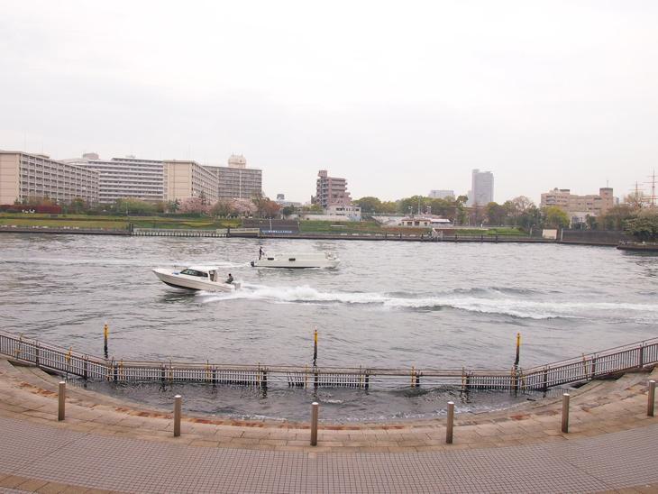 向かいは江東区越中島。