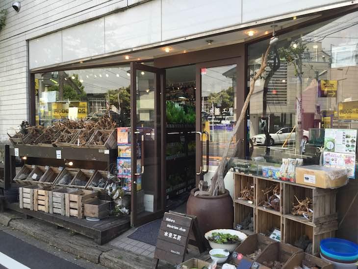 aquarium shop「水景工房 奥沢店」