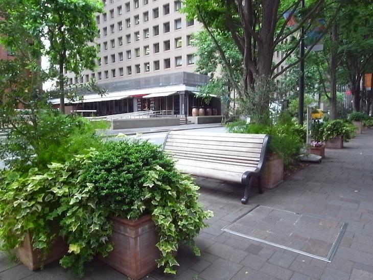 ビルと緑の谷間にベンチ