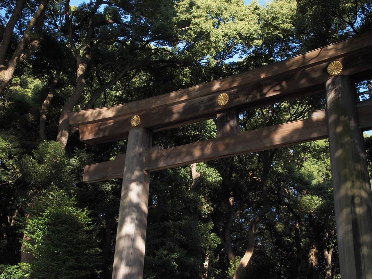 代々木公園方面口からすぐのところにある南門。圧倒的な存在感です。