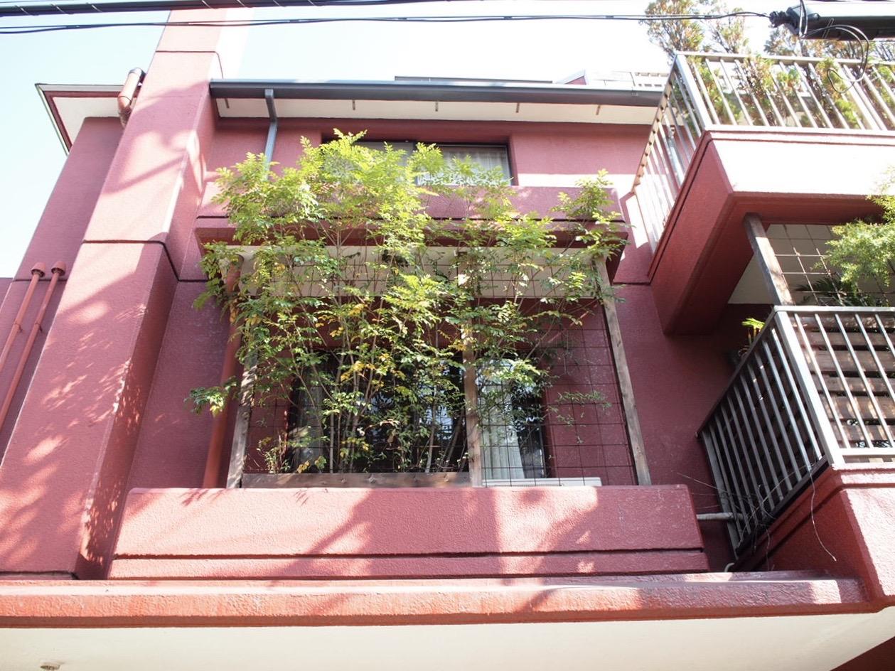 この建物のカラーと窓、植物の植え方、煙突。日本じゃないみたいです。こういう出会いがあるから街歩き大好きです。