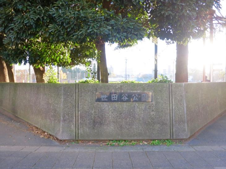 ついでに世田谷公園まで足を伸ばしてみる。