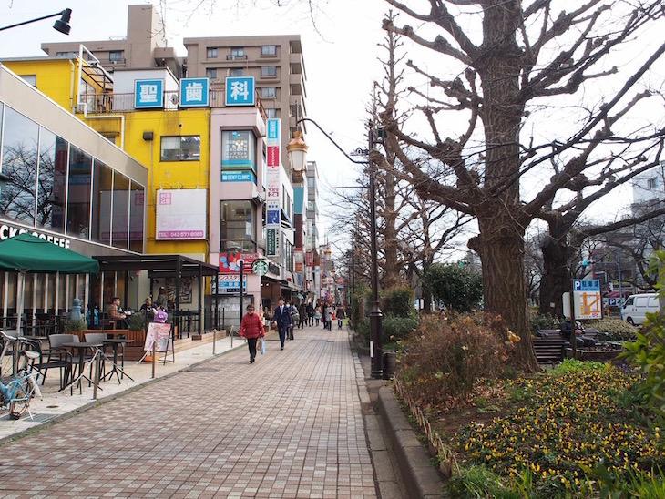 歩道、自転車道、車道の幅が広く独立しています。ごちゃごちゃせず、綺麗に整備されています。