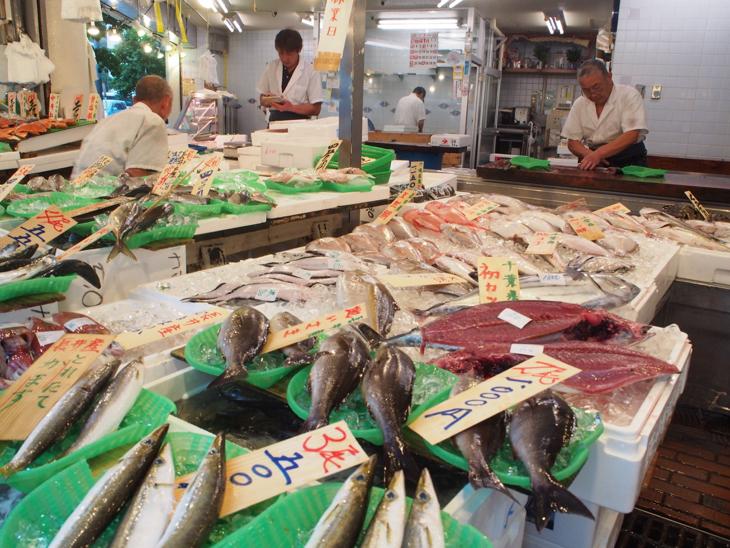 大きなお魚もたくさん並びます。