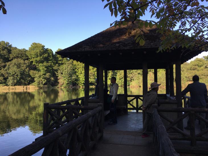 三宝寺池を望める場所