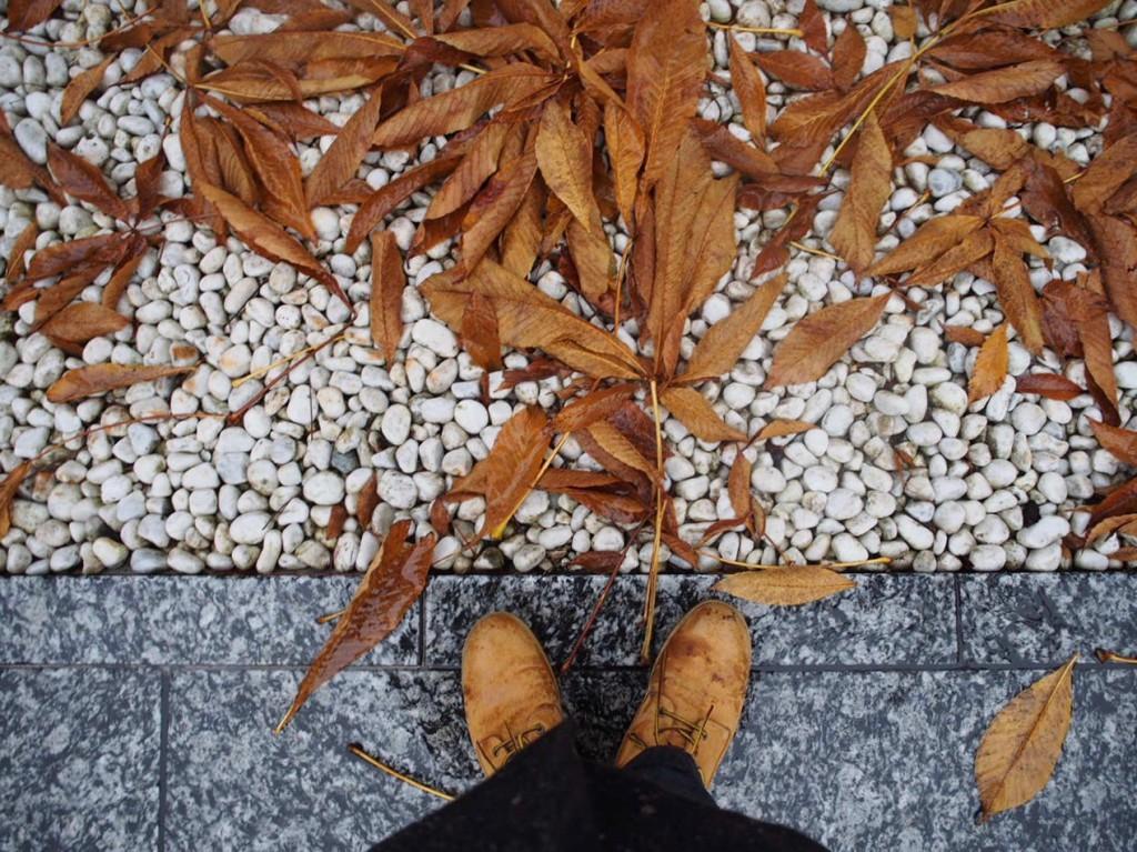 綺麗な境内でした。そして僕の足は凍えていました。
