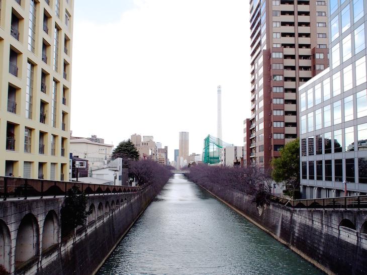 5時間かかった・・・川は長いなあ。