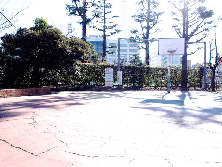 雰囲気のいいバスケットゴール