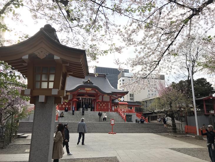 桜が綺麗でした。ここでもR-STOREの繁栄を祈っときました。