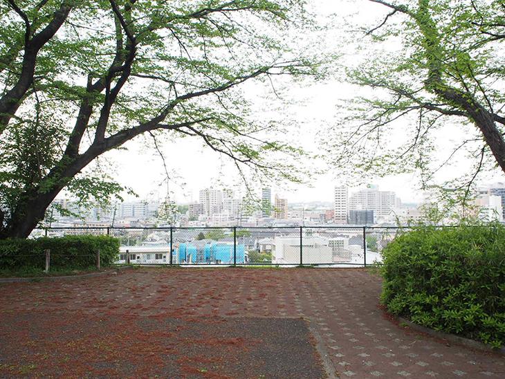桜の時期は綺麗なんだろうなぁ。