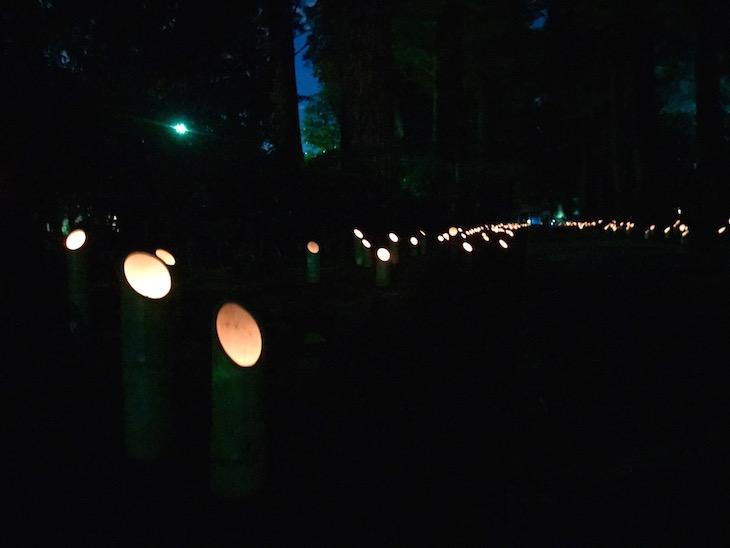 夜の雰囲気も素敵でした。