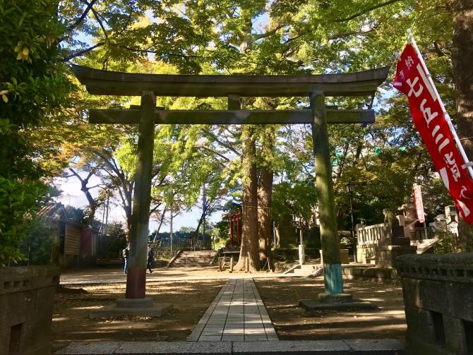 緑が多く気持ちのよい亀岡八幡宮。