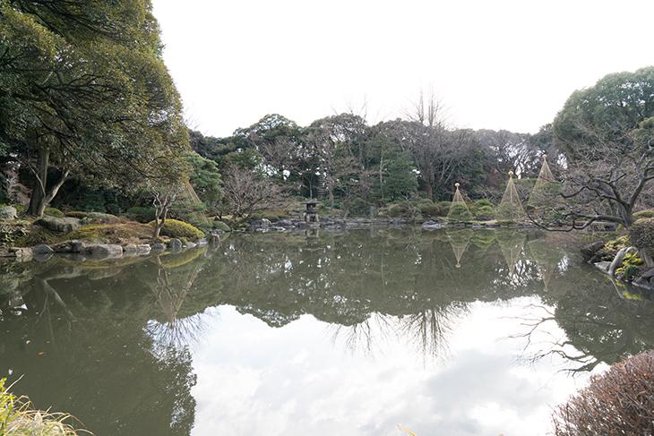 庭には池があります