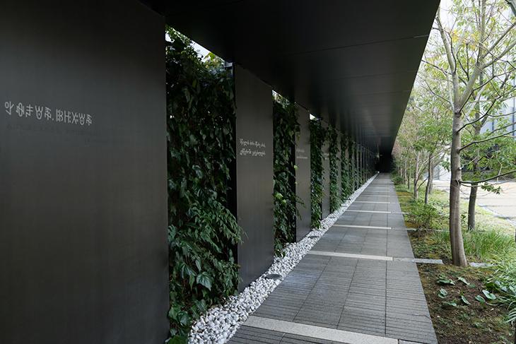 中庭横の廊下