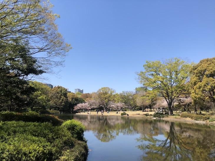 池と芝生広場と。