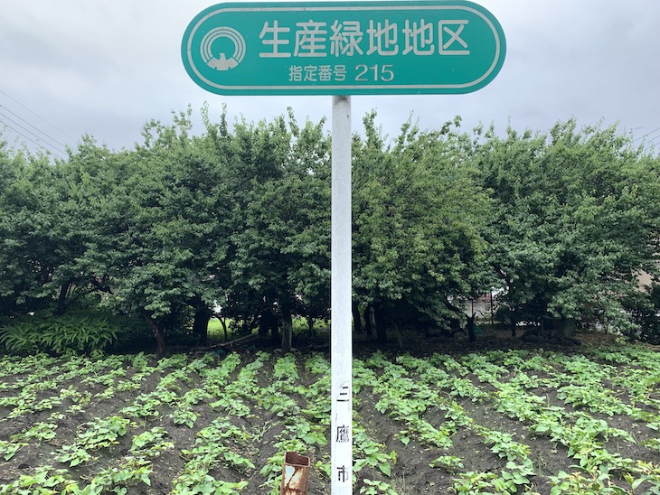 生産緑地地区という指定をされた場所が多くあります。